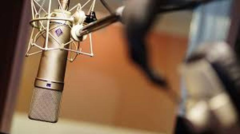 Studio Quality Voice Audio Recording: Record your own message.  15 minutes or less